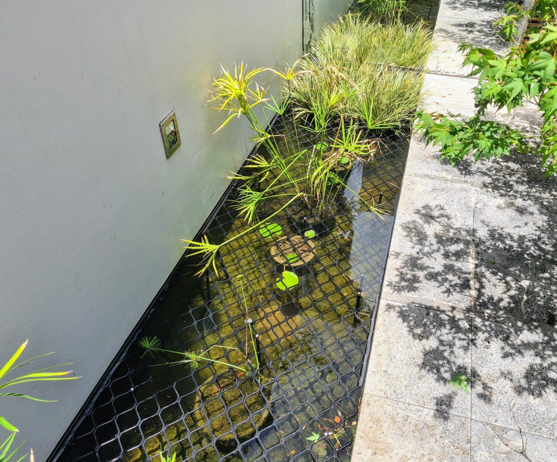 Ponds (2)